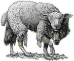 wolf-sheep-clothing