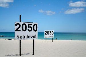 2050-sea-level