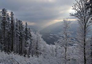 the-carpathians